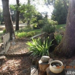 10940 Sycamore Ct - yard picture