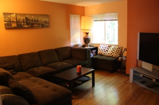 151 Temescal Circle - living room picture
