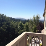 3708 Crown Hill Dr view picture