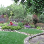 3708 Crown Hill Dr yard picture