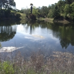 6125 Pope Valley Rd - lake picture