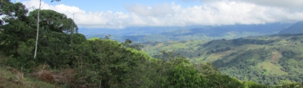 Dominical Lots - view picture