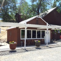 Pope Valley Winery - picture
